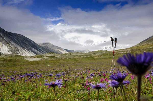 拉萨租车自驾游给你最新西藏旅游资讯