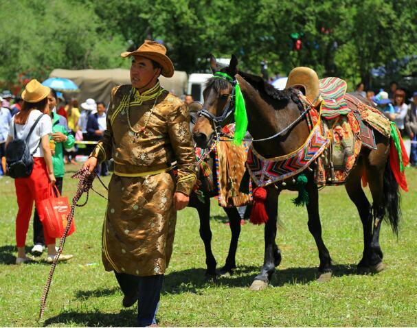 赛马会——西藏租车旅游感受草原盛会